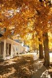 jesień miasto Obraz Royalty Free