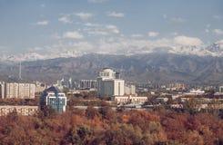 jesień miasto mieści liść drzew kolor żółty Obraz Royalty Free