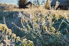 Jesień mróz i słońce, mróz na trawie Obrazy Royalty Free