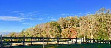 Jesień na Końskim gospodarstwie rolnym Zdjęcia Stock