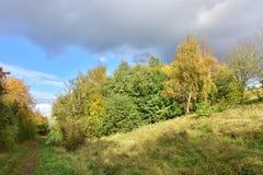 Jesień na słonecznym dniu, park, drzewo, rozgałęzia się Zdjęcie Royalty Free