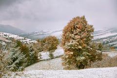 jesień najpierw snow Opad śniegu w górach Obrazy Royalty Free