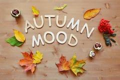 Jesień nastroju tło Zdjęcie Stock
