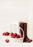 Jesień Żniwo jabłka Gumowi buty Burgundy na bielu Fotografia Royalty Free