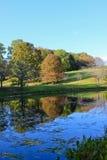 jesień odbić sceneria Zdjęcia Stock