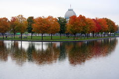 jesień odbicie obrazy stock