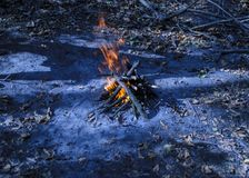 Jesień ogień Obrazy Royalty Free