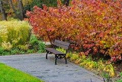 jesień ogród botaniczny fotografia royalty free