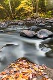 jesień Ontario fotografia stock