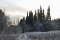 jesień opóźniony krajobrazowy Fotografia Royalty Free