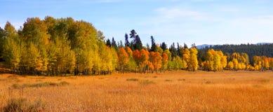 jesień panorama Fotografia Royalty Free