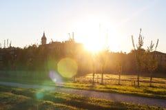 Jesień park i mnóstwo kolorów żółtych liście, aleja w parku sunlight obraz stock