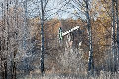 Jesień park Koniec zdjęcie stock
