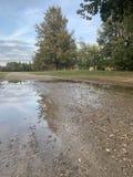 Jesień park w Październiku Wielka kałuża w przedpolu, drzewa, piękny niebo zdjęcia royalty free