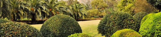 Jesień park w ranku w chmurnej pogodzie Obrazek jesieni park Wrześni krajobrazy w parku Chmurząca pogoda Parkowe aleje zdjęcia stock