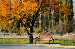 Jesień park w Tekeli obraz stock