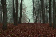 Jesień park w zwartej mgle z widmowym sylwetki jesieni krajobrazem z jesieni drzewami i czerwień suchymi spadać liśćmi Zdjęcia Royalty Free