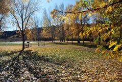 jesień parka zaciszność Fotografia Royalty Free