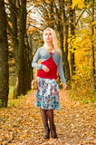 jesień parkowi chodzący kobiety potomstwa Obrazy Stock