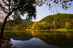 jesień piękna Obrazy Royalty Free
