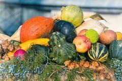 Jesień piękna dekoracja zdjęcia royalty free