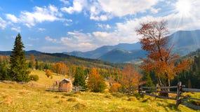 jesień piękna ja kształtuję teren Zdjęcia Royalty Free