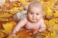 jesień piękni dzieci liść Zdjęcie Stock