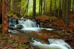 Jesień piękny krajobraz Obraz Stock