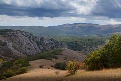 Jesień piękny las Zdjęcia Royalty Free
