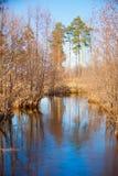 Jesień piękny panoramiczny wiejski krajobraz Obraz Royalty Free