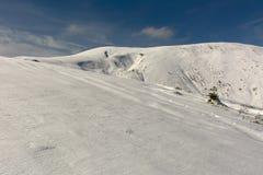 Jesień pierwszy śnieg Obrazy Royalty Free