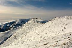 Jesień pierwszy śnieg Fotografia Stock