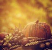 jesień pojęcia odosobniony biel Obrazy Royalty Free