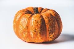 jesień pojęcia odosobniony biel Różnorodne banie na białym tle z spadkiem opuszczają, frontowy widok Żniw warzywa, dziękczynienia obraz royalty free