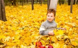 Jesień portret piękny dziecko Szczęśliwa chłopiec z liśćmi w parku w spadku obraz stock