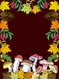 Jesień prezenty natura royalty ilustracja