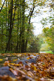 Jesień przejście Obrazy Royalty Free