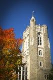Jesień przy Princeton obrazy royalty free