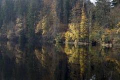 Jesień przy rzeką Obrazy Stock