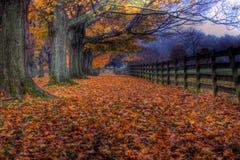 Jesień Przy Springton Rezydenci ziemskiej Gospodarstwem rolnym Obraz Stock