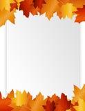 jesień pustego liść papier Obraz Stock