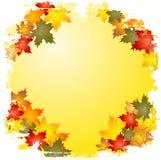 jesień rabatowy grunge liść ilustracji