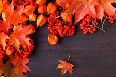Jesień ramowy skład z spadać liśćmi na drewnianym z kopii przestrzenią dla teksta Dziękczynienie, Halloween, sezonowy spadku poję obraz stock
