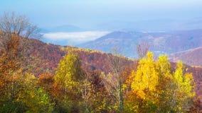 Jesień ranek mgliste góry zdjęcie wideo