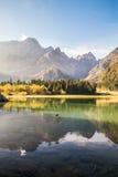 Jesień ranek w alps Obraz Royalty Free