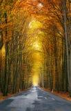 Jesień ruch drogowy zdjęcia stock