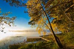 Jesień słońce mgła i Obrazy Stock