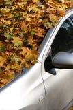 Jesień samochód Obraz Royalty Free