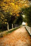 jesień sceneria Fotografia Stock