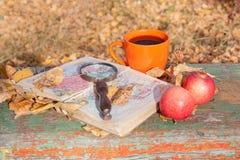 Jesień sen Jesieni podróż zdjęcia royalty free
